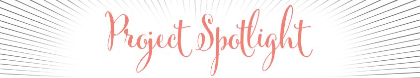 Project Spotlight
